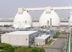 神戸市、官民連携で3000世帯分のエネルギーを賄うバイオマス活用プロジェクトを始動