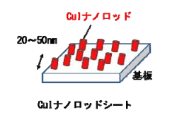JSTと金沢大、有機薄膜太陽電池の新構造を開発 高効率化に成功
