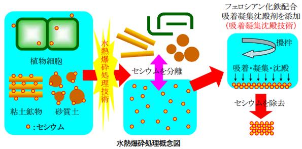 粘土鉱物や植物内の放射性物質を水熱爆砕処理で除去する技術