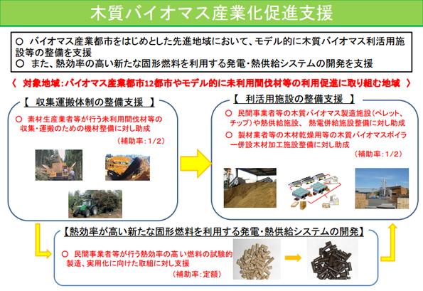 大分県、木質バイオマス利用機器への補助希望者を調査