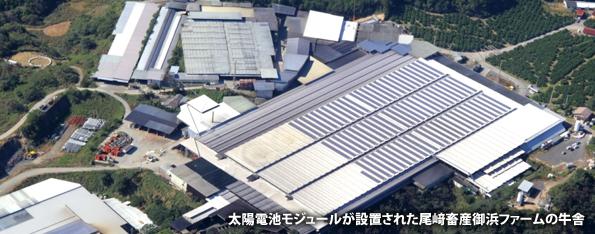 カナディアン・ソーラー、国内初のメガソーラーを三重県の酪農場屋根に設置