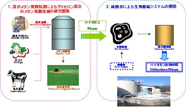 牛糞尿、食品生ごみからバイオガスを効率よく作る新技術 北海道に試験プラント