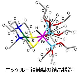 九州大学など、水素から電子を取る貴金属不使用の触媒を開発