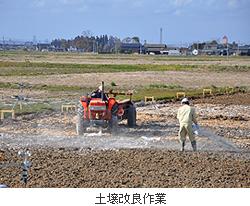 大林組、塩害農地で土壌改良と除塩を促進する新技術を開発