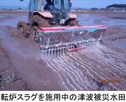 福島県相馬市の被災農地で転炉スラグ入り肥料の除塩有効性を検証