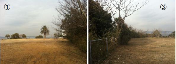 東京都世田谷区、神奈川県内で太陽光発電事業 設置事業者を募集