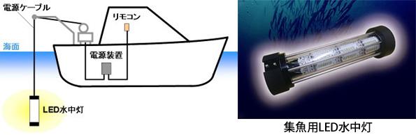 消費電力と燃料コストを75%削減する集魚用LED水中灯