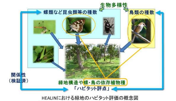 前田建設、緑地設計の生物多様性評価プログラムを開発 コスト&時間短縮