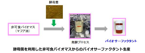 産総研、非食用油を高機能洗剤に加工できる新技術を確立