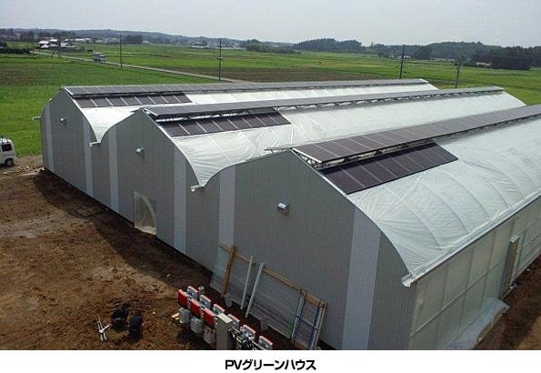 福島県で「ビニールハウス+太陽光発電」 ソーラーフロンティアが実験開始