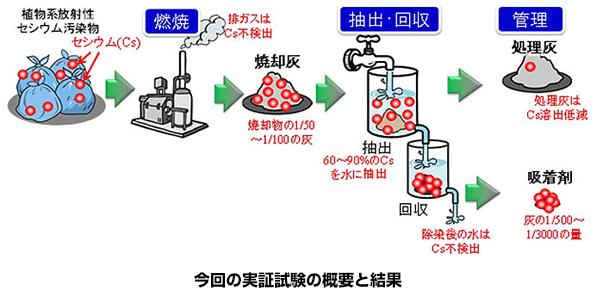 産総研、植物系の焼却灰を除染する新技術を開発 除染の加速に期待