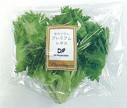エージーピー、植物工場に参入 腎臓病患者のための低カリウムレタスを生産