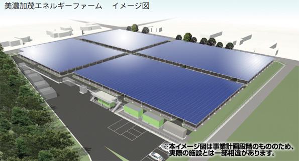 岐阜県にソーラーシェアリングのメガソーラー完成 架台下でサカキ栽培