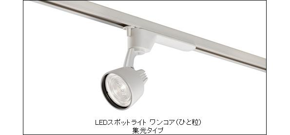 パナソニック、ひと粒タイプのLED照明に新製品投入 店舗や飲食店向け