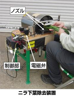 ニラの下葉を除去する機械 電力消費量が半分に
