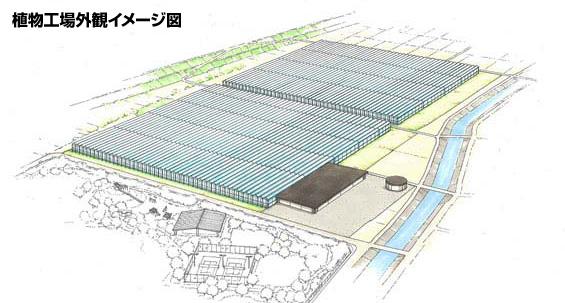 山梨県の大規模植物工場で高品質トマト 競争力強化し世界へ輸出