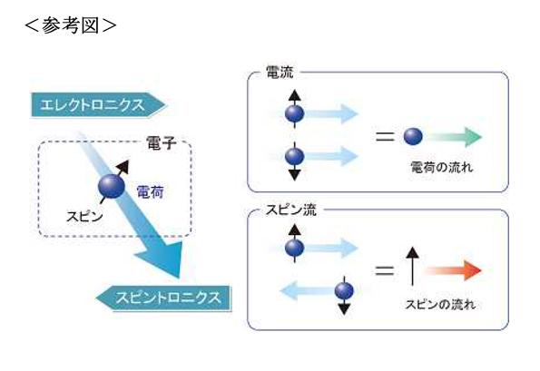 慶応大、電気を流すプラスチック中での磁気の流れを解明