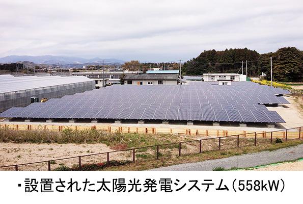 「追尾型」ソーラシェアリング 福島県の農業生産法人が導入へ