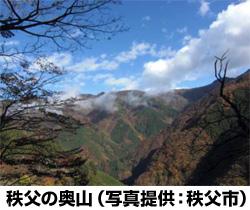 早稲田大発ベンチャー企業、埼玉県秩父市で木質バイオマス発電を開始