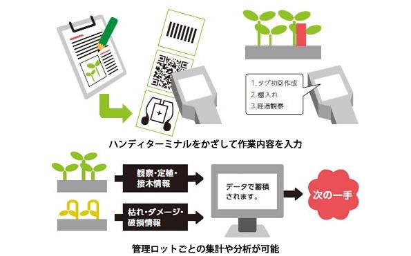富士通の植物工場向け生産管理システム ハンディターミナルで作業を簡易化