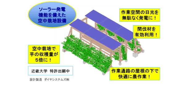 サツマイモの空中栽培+太陽光発電 放射能汚染の土を使わず栽培可能