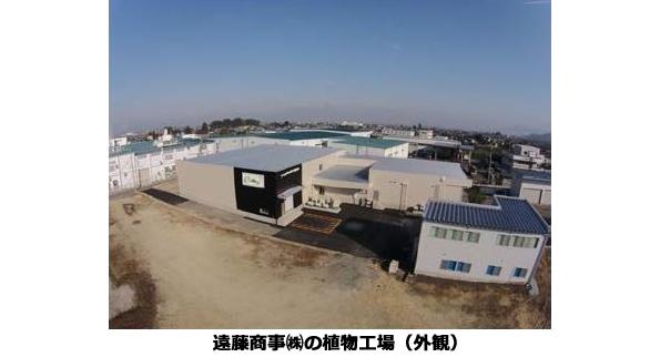 山形県に完全閉鎖型植物工場が完成 高速栽培技術・LED照明を採用