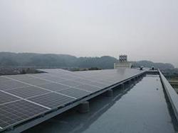 静岡県藤枝市、小中学校や市立体育館で屋根貸し太陽光発電 事業者公募へ