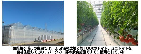 ディズニーランド・ディズニーシー、園内で提供する野菜を植物工場で自社生産