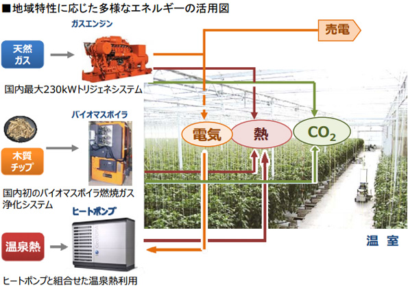 植物工場に熱とCO2を供給するバイオマスボイラ LPGに比べ燃料費7割減