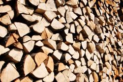 国産間伐材の木質チップを自ら製造・供給 林業とつながる木質バイオマス発電