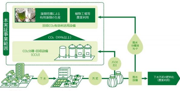 東芝・ユーグレナなど、バイオガス中のCO2を分離・回収し藻類の培養に活用