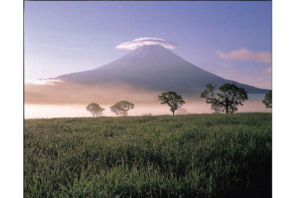 静岡県富士宮市、太陽光発電・風力発電に規制 小規模な設備にもガイドライン
