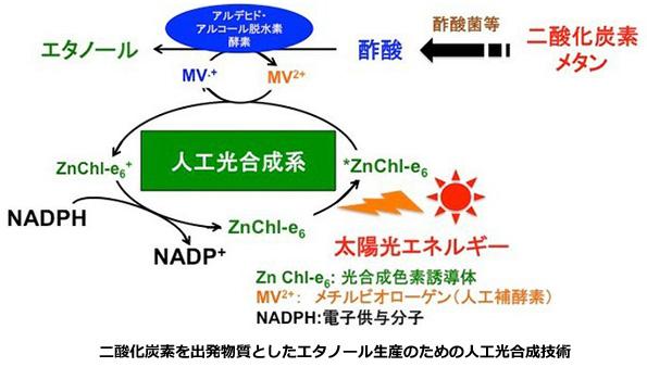 太陽光でCO2を燃料に ― 酢酸からエタノールを生む人工光合成技術