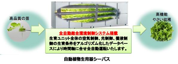 個人を対象にした植物工場ユニット登場 年間2000万円の収益うたう