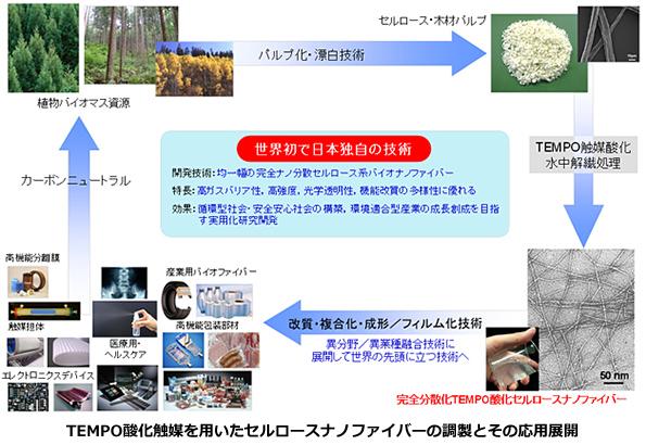 国産材からすごいバイオマス素材を作る技術 「森林科学分野のノーベル賞」受賞