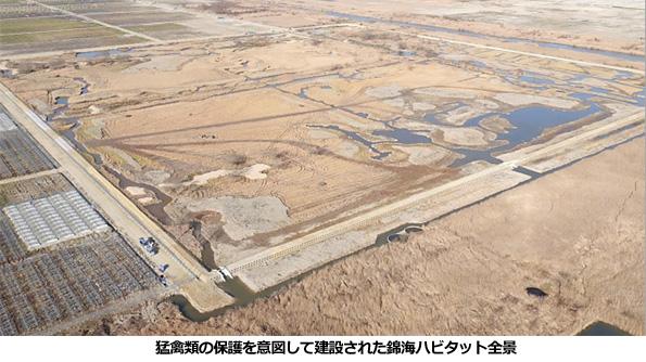 塩田跡地に建設中の巨大メガソーラー、塩性湿地帯を再現した「保全地」を設置
