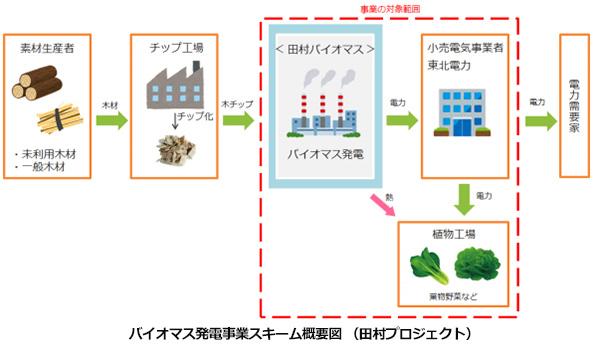 タケエイ、福島県で木質バイオマス発電事業 植物工場への熱供給も検討