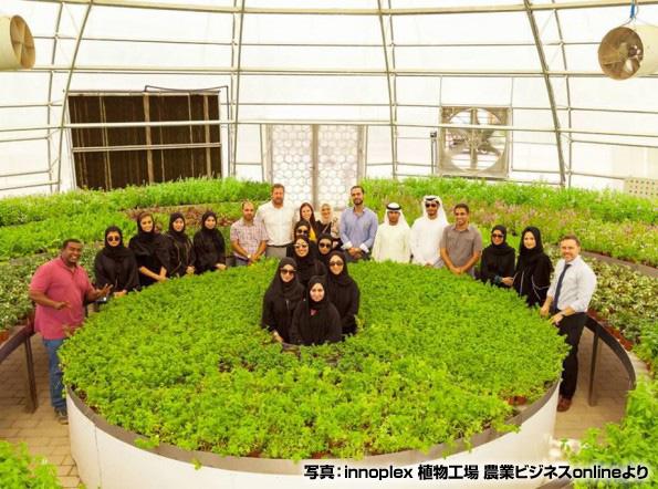 ドバイに「グリーン・シティ」誕生 太陽光発電やドーム型ハウスでの農業など