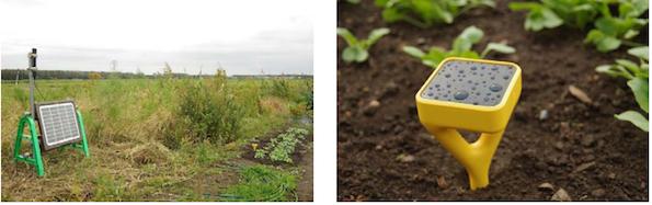電源不要、導入2時間 農業向け自立型の土壌センサ+無線LANの実験スタート