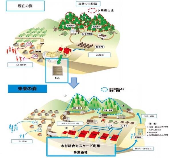 広がる「木材のカスケード利用」 鳥取県日南町でも事業化の検討スタート