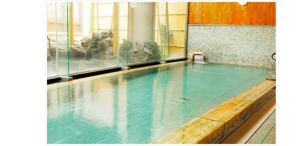 栃木県、温浴施設にバイオマス利用設備を導入する事業者を公募
