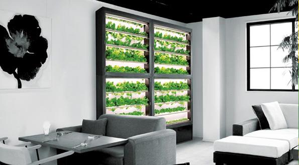 極薄23cm・壁面型の植物工場、レストランやホテル向けに販売開始