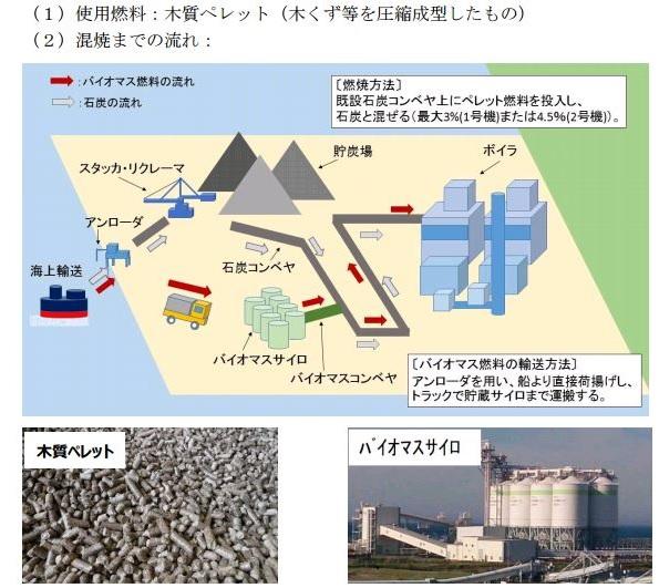 東京電力、茨城県の火力発電所で木質バイオマス混焼 CO2排出22万t削減