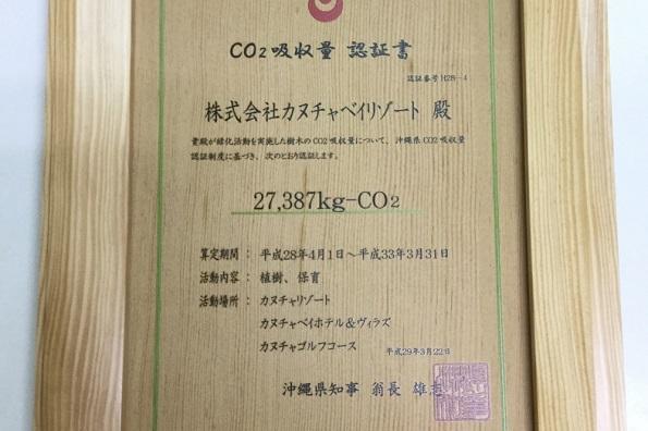 沖縄のリゾート施設、ヤシの木を植樹しCO2クレジット認証取得