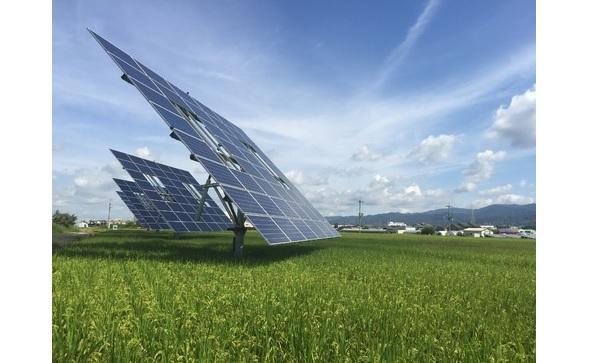 水田に追尾式太陽光発電設備でソーラーシェアリング 収穫には影響なし