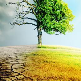 企業が収益を出し続けるために必要な「環境経営」セミナー