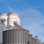 安定収益を確保する『バイオガス発電』の事業戦略の立て方