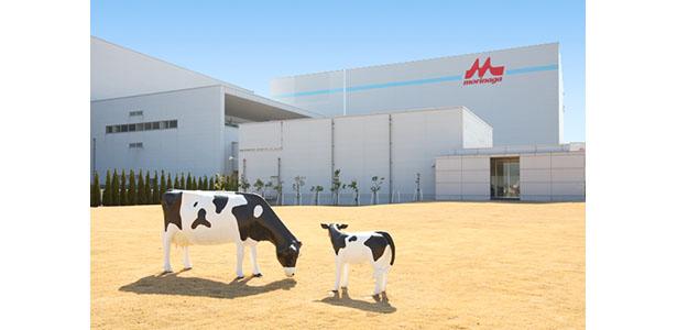 森永乳業、全11工場の主燃料を重油からガスに転換